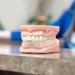 Winchester-Dental-2019-DSC3970
