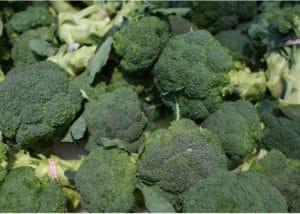 Heads of raw broccoli