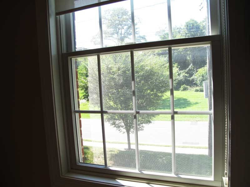 View of a green tree outside a window in Winchester Dental treatment room
