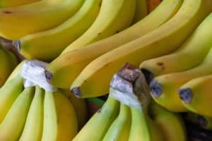 Fresh bananas provide potassium, which helps control acid levels in the blood. Photo credit: Mariko Margetson on Unsplash