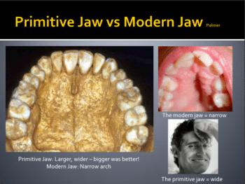 primitive-modern-jaws