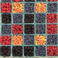 The ployphenols in berries help reduce the risk of infections and inflammation. Photo credit: William Felker on Unsplash